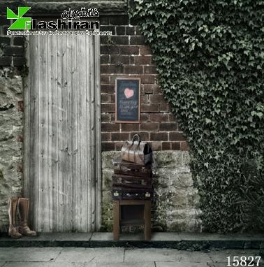 15827 - بکگراند (فون) 15827